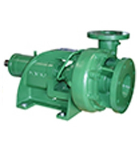 End Suction Pumps (Frame Mounted/ Close Coupled)- Deming